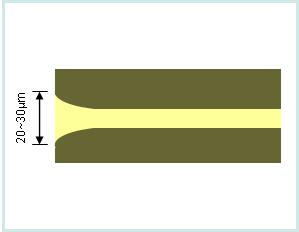 구매하기 열 확장 코어(TEC) 광섬유