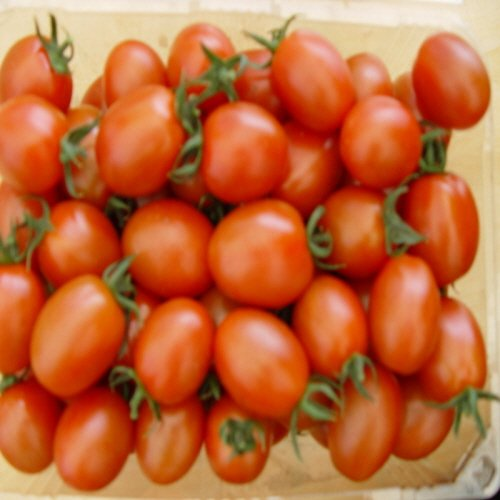 구매하기 대추 방울 토마토 3kg