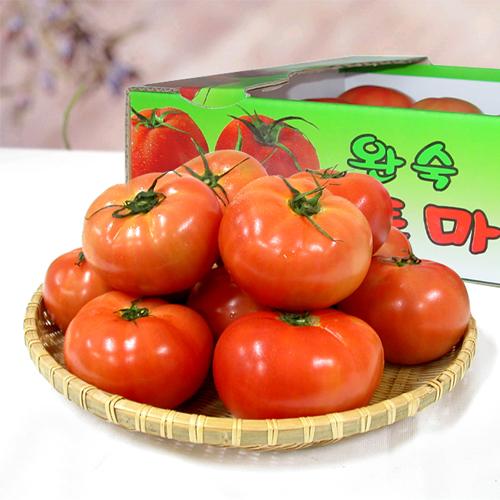 구매하기 벌교부농 완숙 토마토 5kg / 친환경 재배