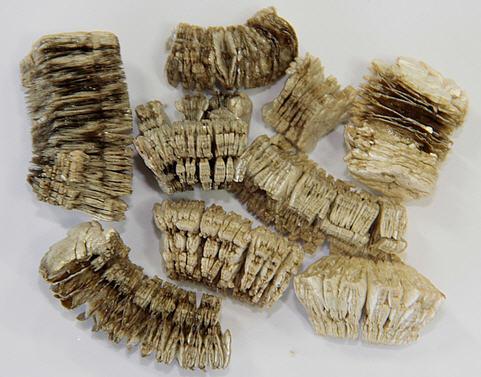 구매하기 질석(Vermiculite) / 팽창질석(Expanded Vermiculite)