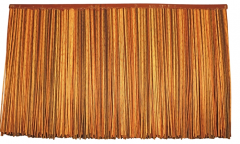 인조갈대 아프리카형