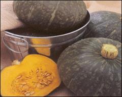 당질, 단백질, 비타민, 미네랄 등의 함유량이 많은 밤호박 / 에비스, 홋꼬리 에비스