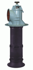 입축축류펌프