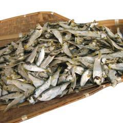Dried sardine(dried big eyed hering)