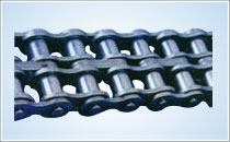 Double strand chain